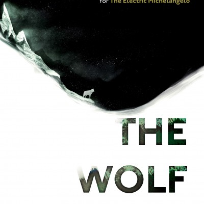 book cover The Wolf Border