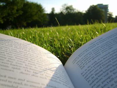 Literary Field Kaleidoscope   summer reading   Sandra van Lente