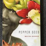 Literary Field Kaleidoscope | Indiebookday2020 | Malika Booker